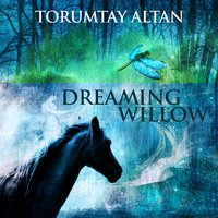 Dreaming Willow — Torumtay Altan