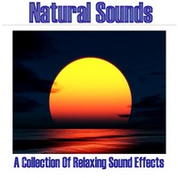 Natural Sounds - A Collection Of Relaxing Sound Effects — сборник
