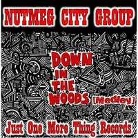 Down in the Woods / Angel Eyes / What's Going On? — Nutmeg City Group