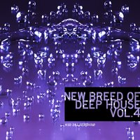 New Breed of Deep House, Vol. 4 — сборник