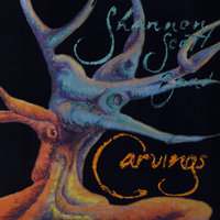 Carvings — Shannon Scott Band