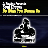 Do What You Wanna Do — DJ Rhythm presents Soul Theory, DJ Rhythm, Soul Theory