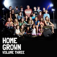 Hall Music Productions: Home Grown, Vol. 3 — сборник