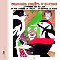 Grandes forêts d'Europe, le concert des oiseaux - Soundscapes, the Chorus of Birds — Pierre Huguet
