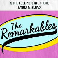 Is the Feeling Still There / Easily Mislead — The Remarkables