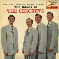 Vintage Rock Nº12 - EPs Collectors — The Crickets