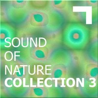 Sound of the nature – collection 3 — сборник