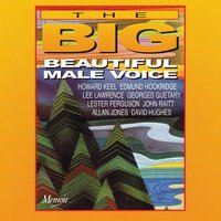 The Big, Beautiful Male Voice — Various Artists - Memoir Records
