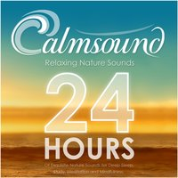 Relaxing Nature Sounds: 24 Hours of Exquisite Nature Sounds for Deep Sleep, Study, Meditation and Mindfulness — Calmsound