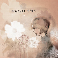 Centimetres / Hidden in the Frost — Parcelpost, Parcel Post