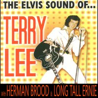 The Elvis Sound Of… — Herman Brood, Terry Lee, Long Tall Ernie