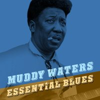 Essential Blues — Muddy Waters