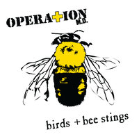 Birds + Bee Stings — Operation M.D.
