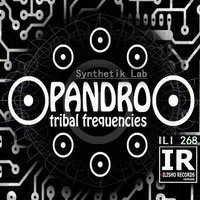 Synthetik Lab — PANDRO tribal frequencies