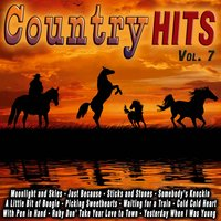 Country Hits Vol. 7 — сборник