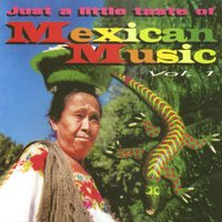 Just a little taste of Mexican Music Vol. 1 — Just a little taste of Mexican Music Vol. 1