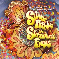 Silver Apples and Strawberrry Fields (28 Lost Tracks from the British Psychedelia) — сборник