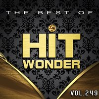 Hit Wonder: The Best of, Vol. 249 — сборник