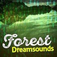 Forest Dreamsounds — Dreams of Nature