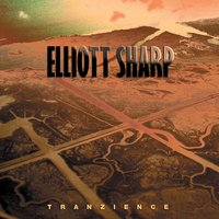 Elliott Sharp: Tranzience — Elliott Sharp, Either/Or, Jack Quartet, New Thread Quartet