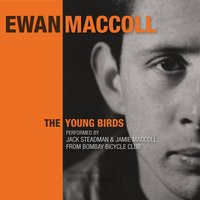 The Young Birds — Jack Steadman, Jamie MacColl