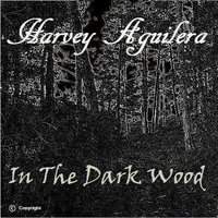 In the Dark Wood — Harvey Aguilera