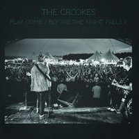 Play Dumb / Before the Night Falls II — The Crookes