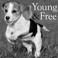 Young and Free — Deluxe Vagabonds