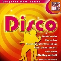 Time To Dance Vol. 4: Disco — Gary Stifford Orchestra