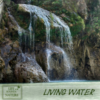 Living Water - Your Sound for Relaxation and Meditation — Life Sounds Nature