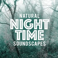 Natural Nightime Soundscapes — Dreams of Nature