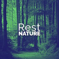Rest: Nature — Rest & Relax Nature Sounds Artists