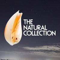 The Natural Collection — Natural Sounds, Nature Sound Collection, Natural Sounds|Nature Sound Collection|Nature Sounds