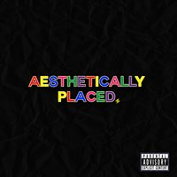 Aesthetically Placed — Dave Steezy