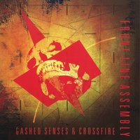 Gashed Senses & Crossfire — Front Line Assembly