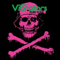 Pure Punk — The Vibrators