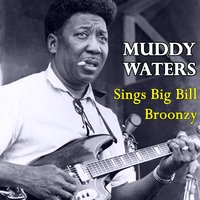 Sings Big Bill Broonzy — Muddy Waters