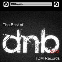 Best of Drum and Bass 2012 - TDM Records — сборник