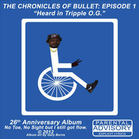 The Chronicles of Bullet: Episode 1 — Bullet Proof