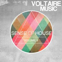 Sense of House, Vol. 9 — сборник