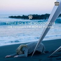 On Tuesdays I´m Not As Young — Phillip Boa & The VoodooClub