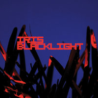 Blacklight — Iris