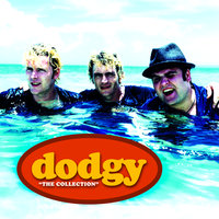The Collection — Dodgy
