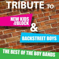 Tribute to New Kids On The Block and Backstreet Boys: The Best of the Boy Bands — Deja Vu