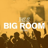 This Is Big Room By Bsharry — Bsharry