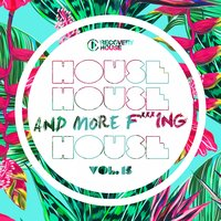 House, House And More F..king House, Vol. 15 — сборник