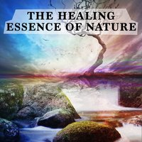 The Healing Essence of Nature — The Healing Sounds of Nature