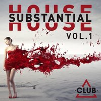 Substantial House, Vol. 1 — сборник