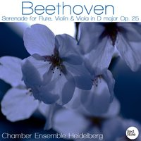 Beethoven: Serenade for Flute, Violin & Viola in D major Op. 25 — Chamber Ensemble Heidelberg