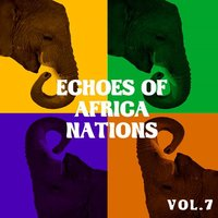 Echoes Of Africa Nations, Vol. 7 — сборник